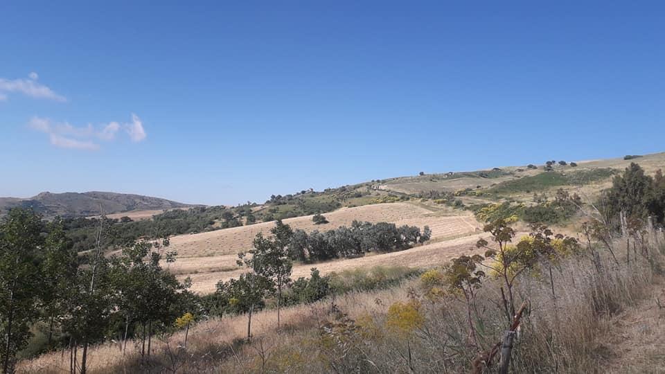 Un tipico paesaggio rurale madonita